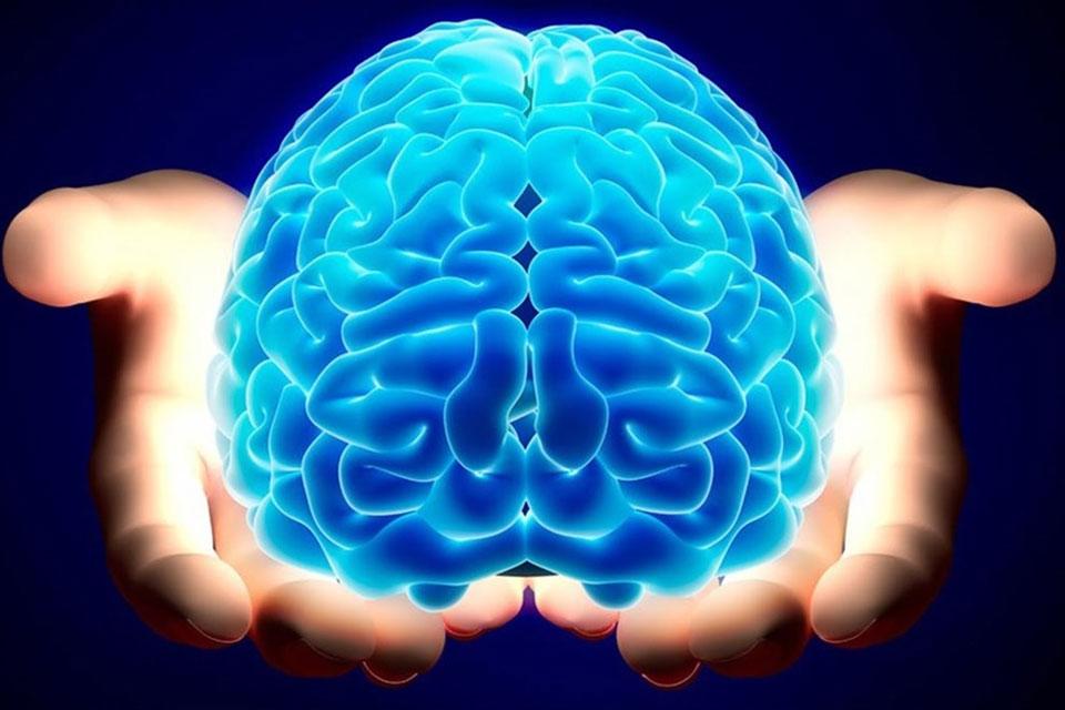 """Imagem de Cérebro humano teria capacidade para """"armazenar"""" a internet inteira no tecmundo"""