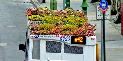 Imagem de Jardim no topo de ônibus pode reduzir poluição de NY no site TecMundo