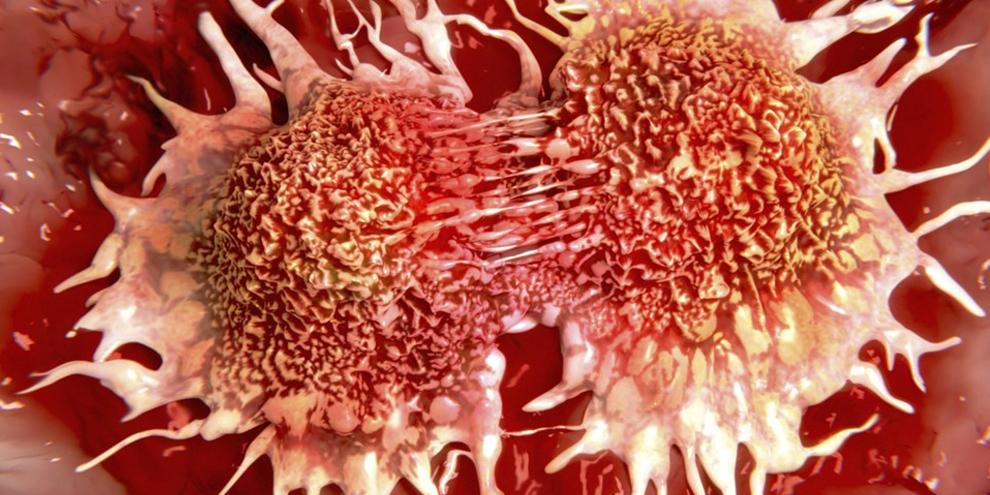 Imagem de Pesquisadores criam nanorobôs que caçam e destroem células cancerígenas no site TecMundo