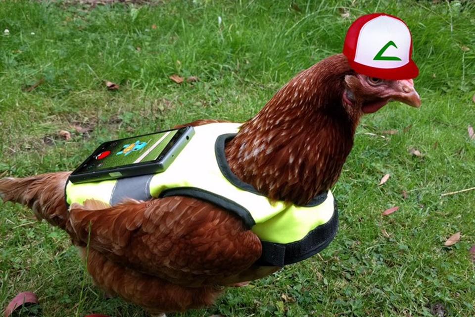 Imagem de Conheça as formas mais criativas e cômicas de chocar ovos em Pokémon GO no tecmundo