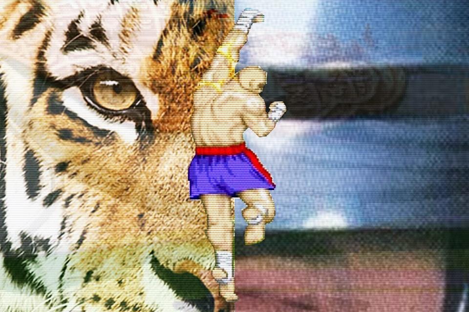 Imagem de Tiger Robocop! Hello recebe sistema de comunidades inspirado no Orkut no tecmundo