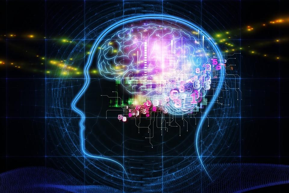 Imagem de Ferramenta da Google leva deep learning para computadores comuns no tecmundo