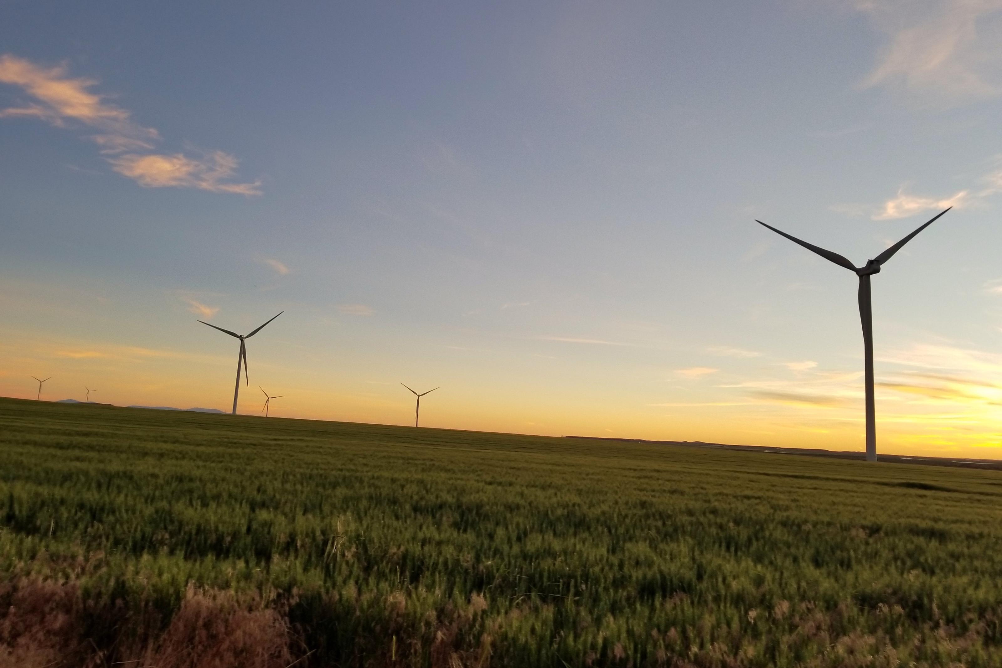 Imagem de Futuro verde: energia eólica já é mais barata do que combustíveis fósseis no tecmundo