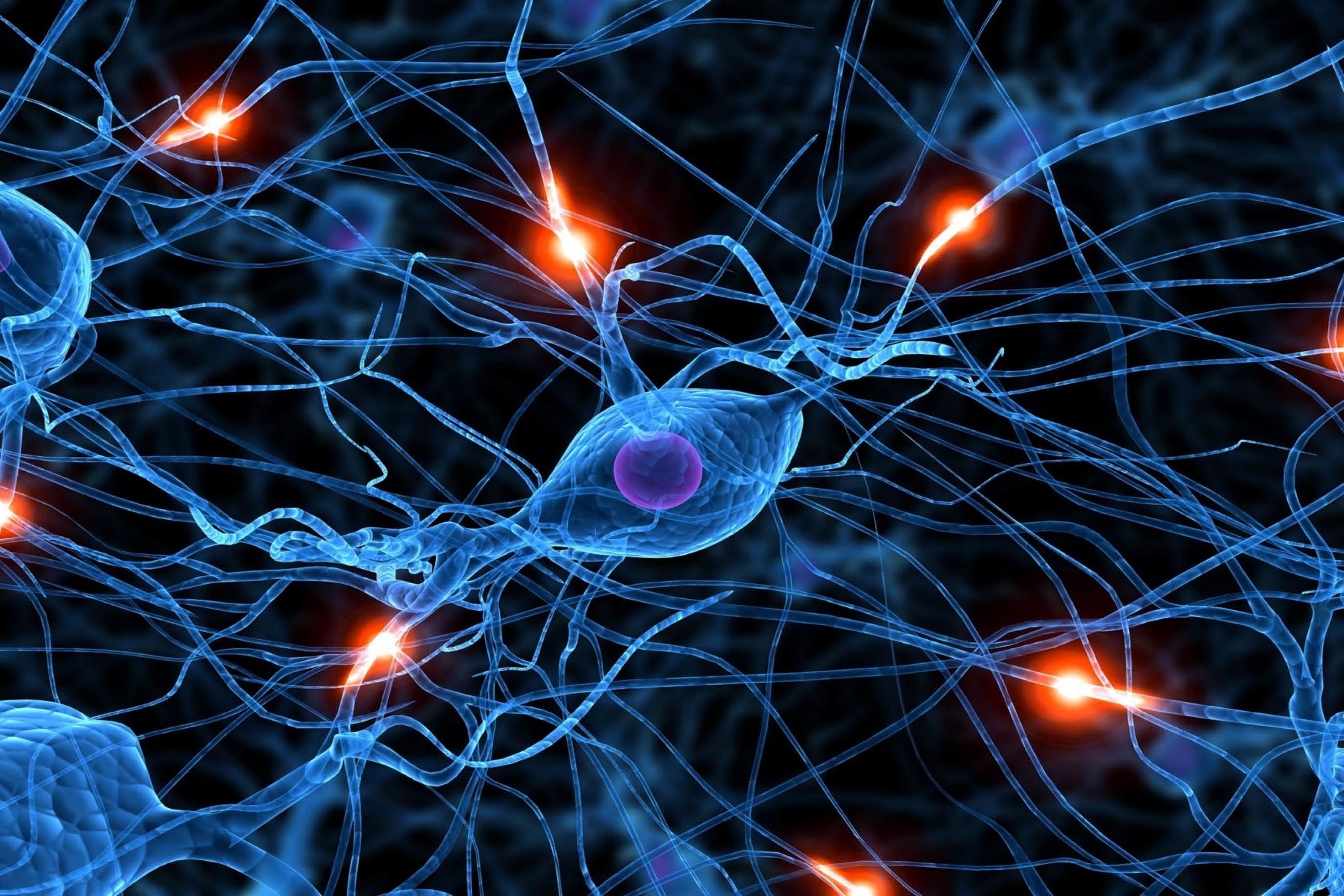 Imagem de Chip neuromórfico que se aproxima do cérebro humano é revelado pela Intel no tecmundo