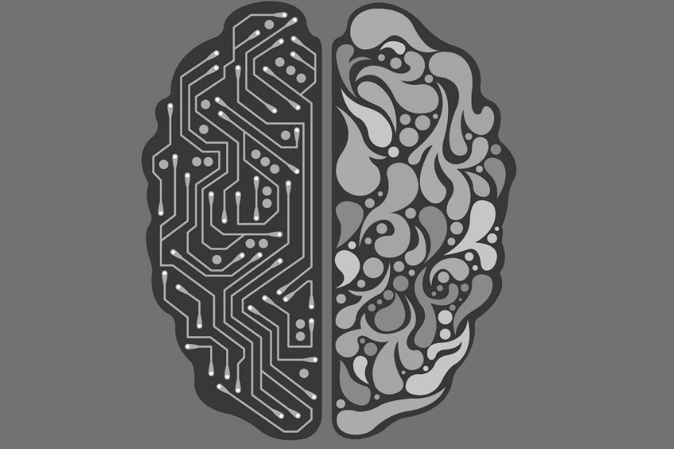 """Imagem de Cérebros digitais nos trouxeram """"uma época ótima para ser neurocientista"""" no tecmundo"""