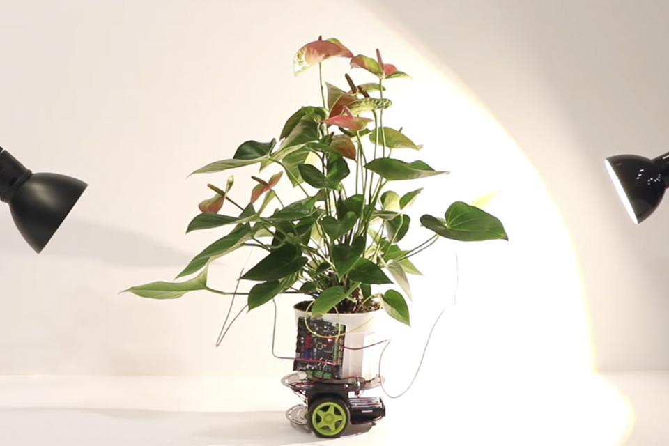 Imagem de Elowan: conheça o robô controlado por sinais naturais das plantas no tecmundo