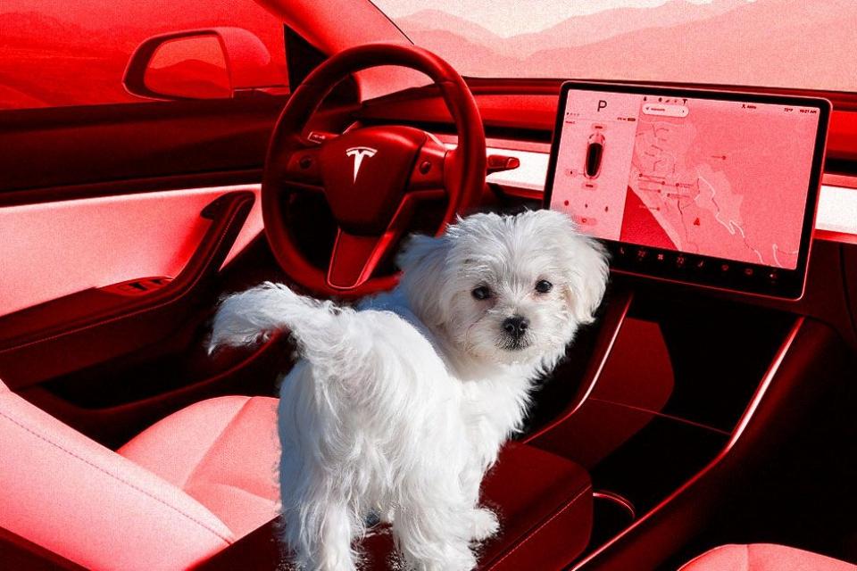 """Imagem de Tesla vai lançar """"Modo Cão"""" e """"Modo Sentinela"""" nos automóveis Model 3 no tecmundo"""