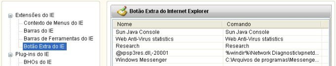 Remova plug-ins suspeitos do Internet Explorer.